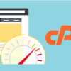 cPanel Plus NGINX