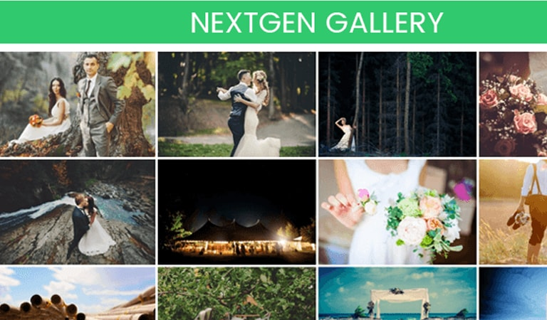 Best WordPress plugins - NextGEN Gallery