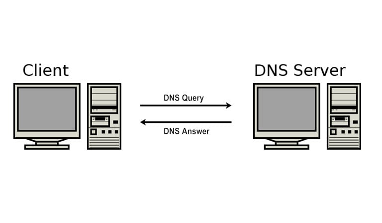 What is DNS - The Query