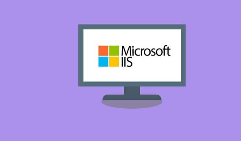 web server - IIS Web Server
